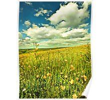 Buttercup Field Poster