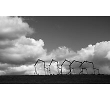 Rural sculpture Photographic Print