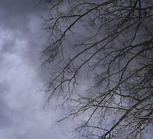 Gray Skies Moving Around Me.. by linmarie