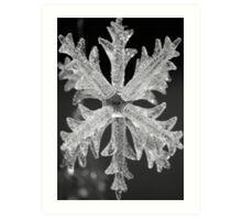 Crystal Snow Flake Art Print