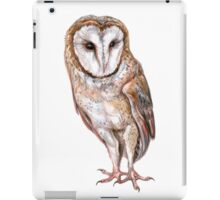 Barn owl drawing iPad Case/Skin