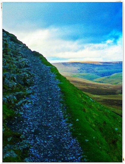 The Path Ahead by Stuart Harley