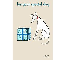 The Hound's Special Day Photographic Print