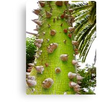 Punk Rock Tree! - punkus rockus arbori Canvas Print