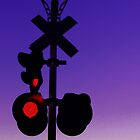 Railroad Crossing by Marcia Rubin