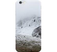 Mountain Birds  iPhone Case/Skin
