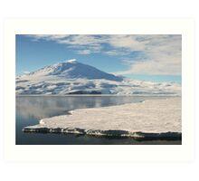 Lonely Penguin, Antarctica Art Print