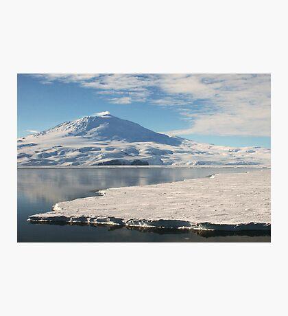 Lonely Penguin, Antarctica Photographic Print