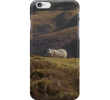In a rugged landscape iPhone Case/Skin