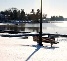 Afternoon winter bench 1 by Brenden Bencharski