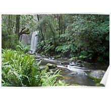 Waterfall, Otway Ranges, Victoria Poster