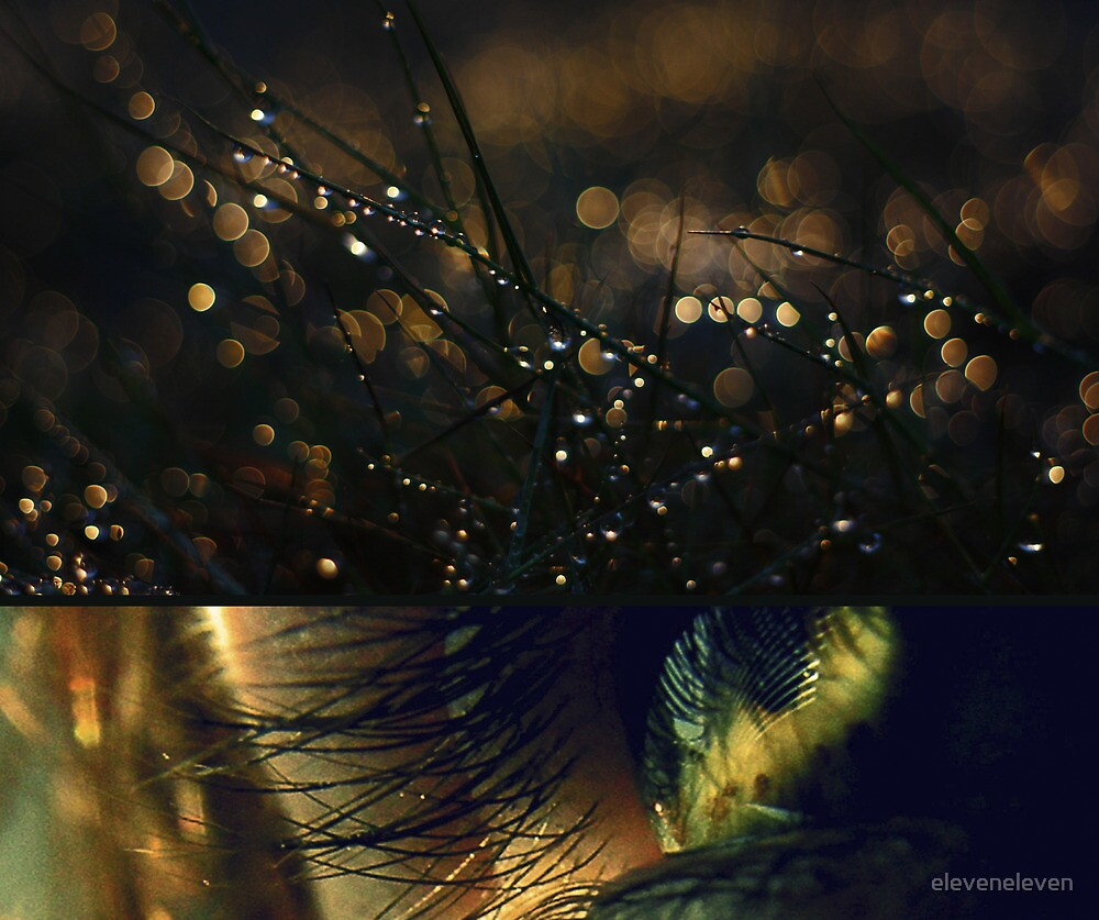 Diptych Collab 2 by eleveneleven
