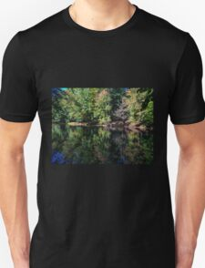 Peace Offering T-Shirt