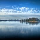 Island of Pines on Frozen Lake by Myron Watamaniuk