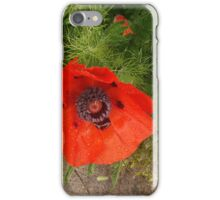 Poppy In The Rain iPhone Case/Skin