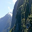 Fiord Cliffs, Milford Sound, South Island, NZ. by johnrf