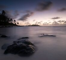 Pacific Dawn by Michael Treloar