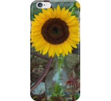 Summer Sun Flower iPhone Case/Skin