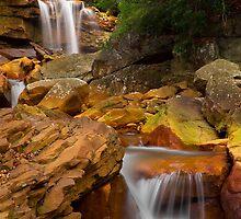 Douglas Falls Downstream by LeeAnne Emrick