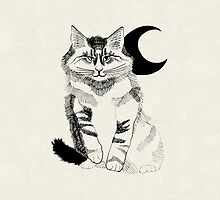 Black Crescent Fluffy Cat by Irrulan