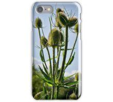 Fuller's Teasel iPhone Case/Skin