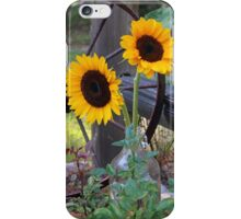 Sun Flowers ~ Yellow Flowers ~ Country Garden iPhone Case/Skin