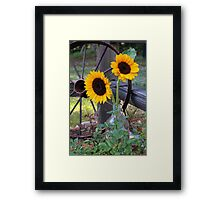 Sun Flowers ~ Yellow Flowers ~ Country Garden Framed Print