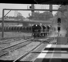 B&W Coal Train - NSW by CasPhotography