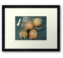 Sacred Peaches Framed Print
