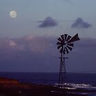 Kalbarri Moon by Eve Parry