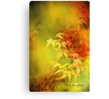 Shades of Autumn III Canvas Print