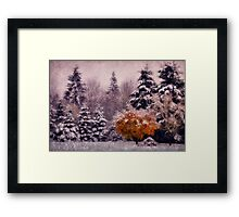 It Was a Dark and Snowy Day Framed Print