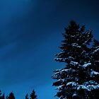 Cold November Night by Tori Snow