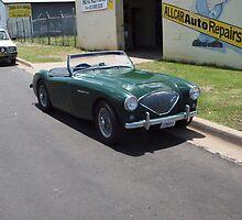 Austin-Healey 100 BN1 22569H by Joe Hupp
