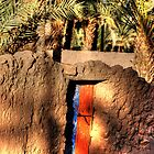 Old Door to walled garden at Tazzarine oasis by Christopher Cullen