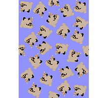silly sheep on blue background Photographic Print