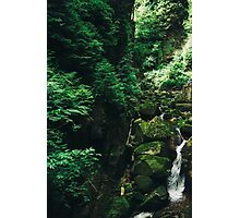 Green Waterfall Photographic Print