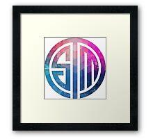 TSM Geometria Eminence Distressed Framed Print
