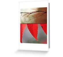 Memories in Red Greeting Card