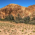 Balcanoona Creek - Gammon Ranges NP - South Australia by Jeff Catford