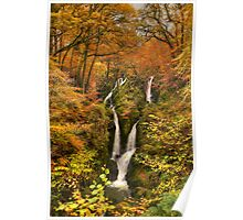 Stock Ghyll Force Poster