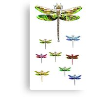 dragonfly squadron Canvas Print
