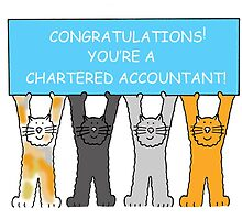 Congratulations you're a chartered accountant. by KateTaylor