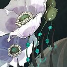 White Opium Poppies  by Kiri Moth
