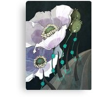 White Opium Poppies  Canvas Print