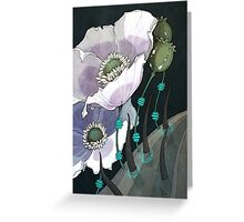 White Opium Poppies  Greeting Card