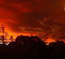 Light In A Red Night #1 - Nov 2010 by tmac