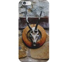 To the Land of Perdition iPhone Case/Skin