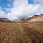Glen Fhiodhaig, Scottish Highlands by Michael Firkins