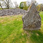 Standing Stone at Corrimony Cairn by Michael Firkins
